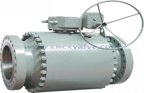 Introduction of forged steel valves made by CX